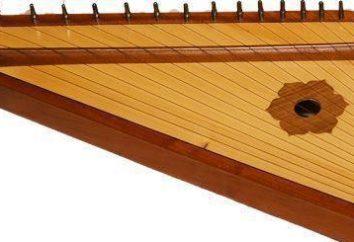 Harfy – co to jest? Starożytna rosyjski folk instrument muzyczny strunowy