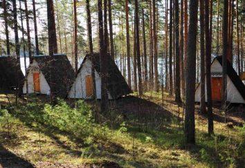 Campeggio nella regione di Leningrado nel grembo della natura