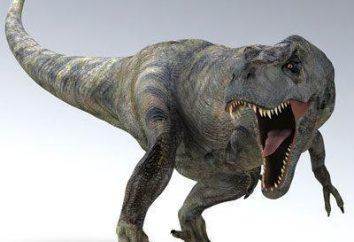 Tyrannosaurus contra gigantozavra: os predadores mais perigosos