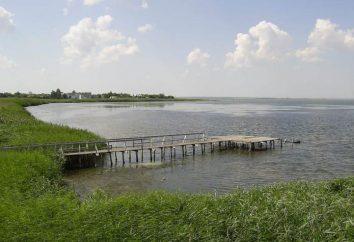 Vityazevsky Mündung: Fangotherapie, Ökotourismus und Fischerei