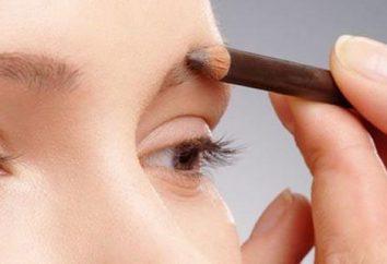 Cómo dibujar las cejas con un lápiz