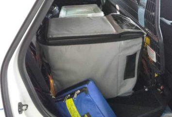 Refrigeradores automóveis: por que precisamos e como escolher