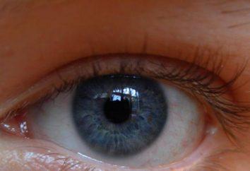 Ufa Istituto di ricerca delle malattie degli occhi. Ufa Istituto di ricerca delle malattie degli occhi