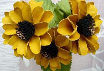 Flower of foamirana: Erstellen Sie erstaunliche Zartheit und Phantastischen Realismus mit ihren Händen!