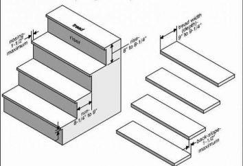 Die Standardhöhe des Leiters