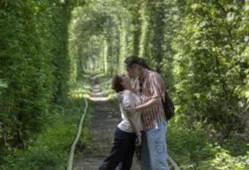 Visitez Amour Tunnel en Klevan et être heureux!