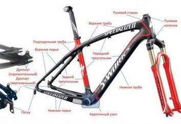 Rower: struktura, rodzaje, budowa, części zamienne. urządzenie rower