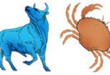 Lekcje z praktycznej astrologii: jak radzić sobie Taurus i rak