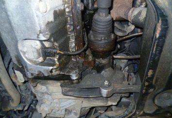 huile circule entre le moteur et la boîte de vitesses: Causes et élimination de la rupture