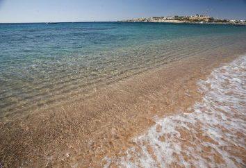 Fortuna Sharm El Sheikh 4 * (Egitto, Sharm el-Sheikh): foto, prezzi e recensioni di turisti provenienti dalla Russia