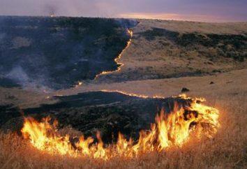 Stepowych pożarów. Sposoby gaszenia pożarów