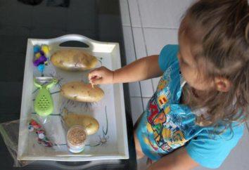 Como fazer um ouriço de batatas? Nós aprendemos!