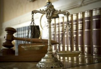 Lo Stato di diritto nel sistema di norme sociali: il loro ruolo e la struttura