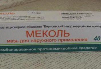 """Maść """"Mekol"""": instrukcja, odczyty, sposób korzystania"""