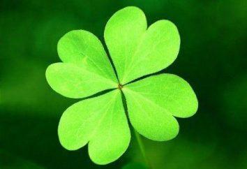 Buona fortuna – è … significato della parola. La fortuna e la fortuna, il successo