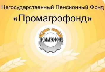 """NPF """"Promagrofond"""": opinie, oceny bezpieczeństwa adres"""