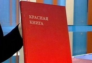 Co to jest Red Book of Ukrainie?