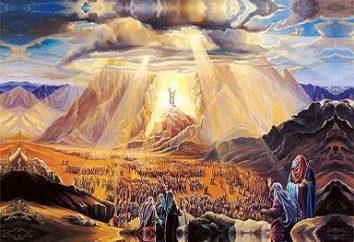 Die Offenbarung Johannes des Göttlichen – die Prophezeiung, die geschah