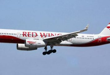 "Aerei ""Red Wings"": recensioni di passeggeri. Red Wings Airlines"