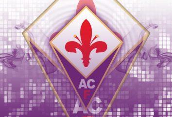 """club de fútbol """"Fiorentina"""": una breve historia y logros"""