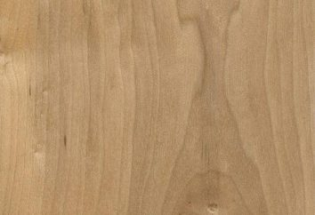 Jaki instrument muzyczny wykonany z drewna sosnowego, opis