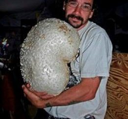 « Tabac grand-père », ou champignon Slicker. Comment faire cuire?