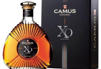 Camus (brandy): opis i opinie