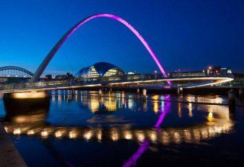 """""""Millennium"""" (ponte): i capolavori architettonici di diversi paesi"""
