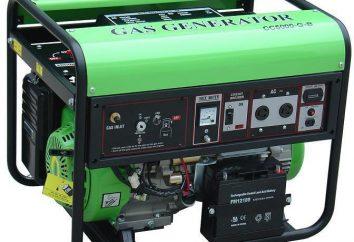 Gaz z głównego generatora gazu: zalety, rodzaje i instalacja zdjęcia