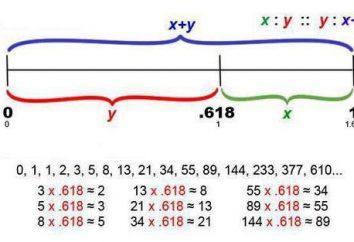 Fibonacci-Zahlen und das goldene Verhältnis: Das Verhältnis