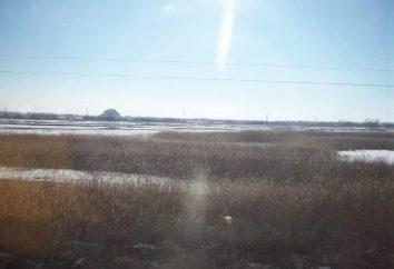 """Train """"Chelyabinsk-Adler"""": Bewertungen von Passagieren, Fotos, Reiseroute"""