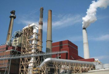Elektrownie cieplne: opis, działanie i specyfikacje