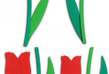 Tulip plissado papel com as mãos. Tulipas de papel ondulado: Master Class