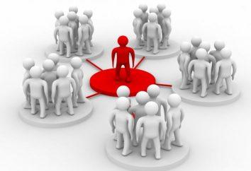 SP różni się od firmy? Plusy i minusy IP i LLC