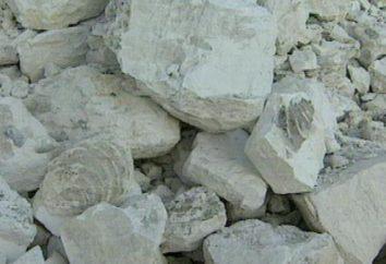 propriétés de calcaire. Rock est calcaire. formule calcaire