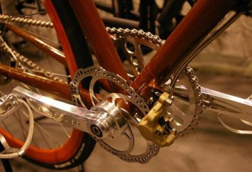 Przewóz roweru i jego charakterystyka