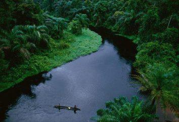 Aprendemos la geografía de África: en algunas partes del continente corre el río Congo