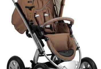Rollstuhl Icoo: Sorten und Bewertungen
