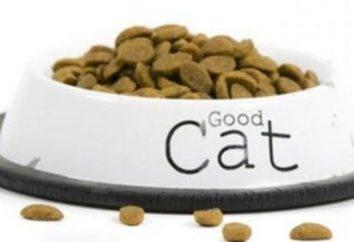 Las alergias a los alimentos en los gatos: síntomas y métodos de tratamiento