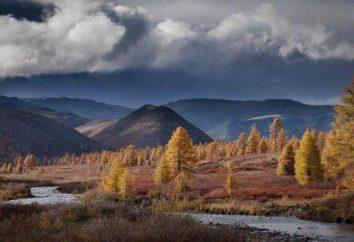 Terytorium i całkowity obszar regionu Tiumeń: opis i ciekawostki