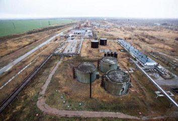 Tatar NPP, Republik Tatarstan: Beschreibung, Geschichte und interessante Fakten