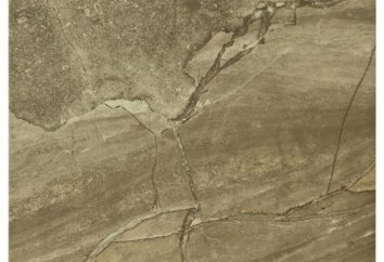 Porzellanfliesen unter dem Stein – der beste Bodenbelag