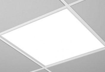 Como escolher um teto lâmpada diodo?