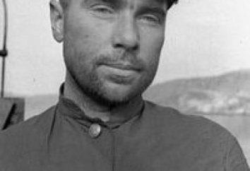 Héros de l'Union soviétique Lunin Nikolay Aleksandrovich: biographie, réalisation et faits intéressants