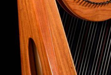 notas localização na pauta para piano e acordeão