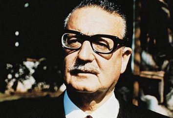 Alende Salvador: biographie, photos, citations. Salvador Allende qui renversèrent?