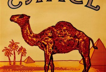 CAMELO – um cigarro com uma história considerável