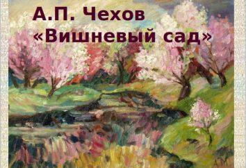 """Charakterystyka Ranevskaya. """"Cherry sad"""" A. P. Chehov"""