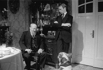 """Il significato e la sintesi del """"Cuore di cane"""" – la storia è senza tempo"""