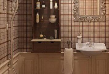 Creare un design elegante di servizi igienici in appartamento